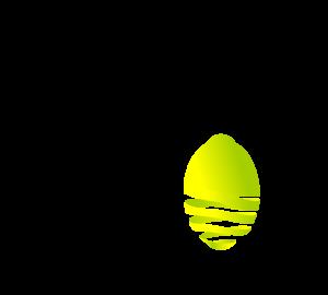 Revised Logo Nov 2015
